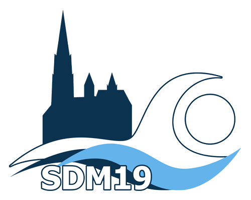Logo SDM19